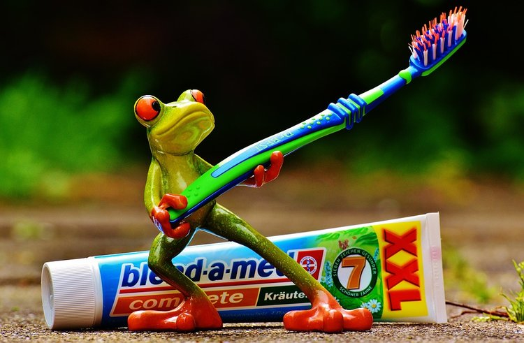 Frog With Toothpaste | Sari Novack Dentistry